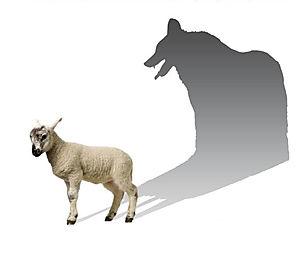 wolf-shadow